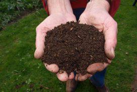 Et si vous optiez pour le compost écologique ?